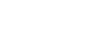 Luscombe Drinks Logo